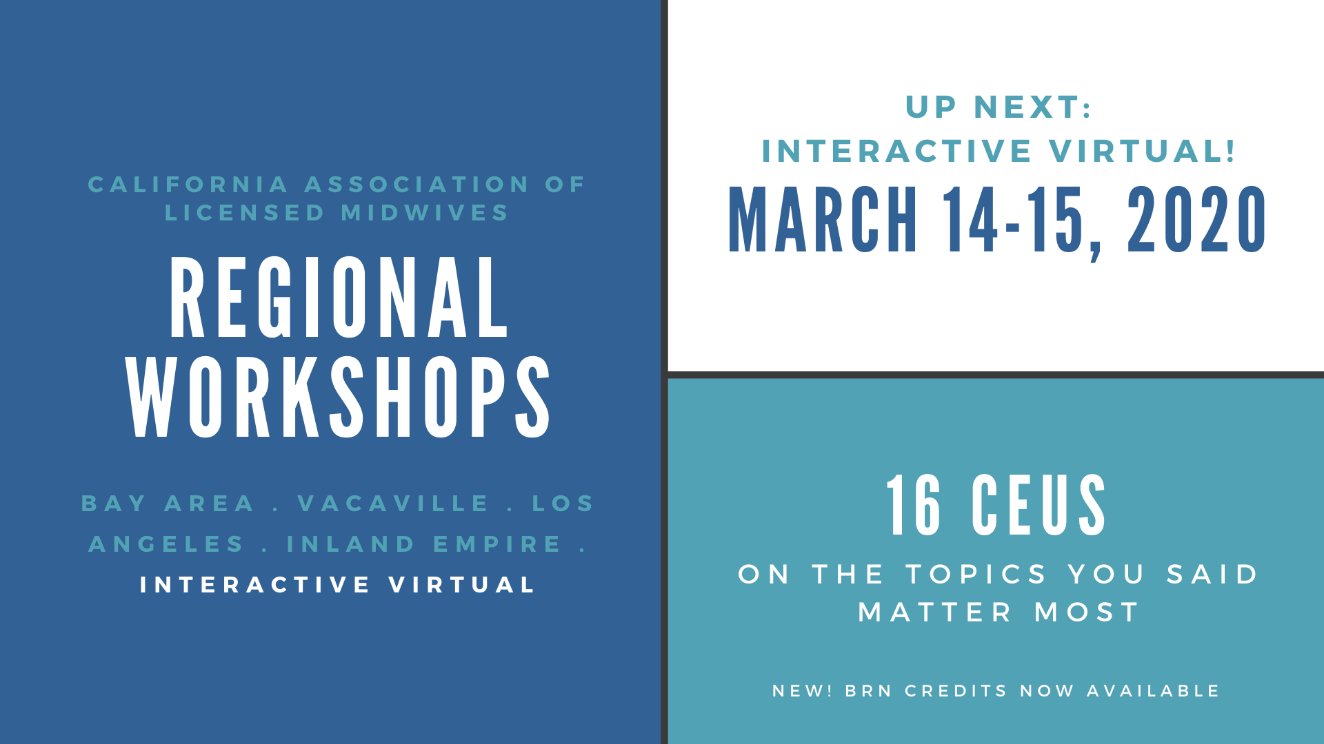 regional workshops (3)